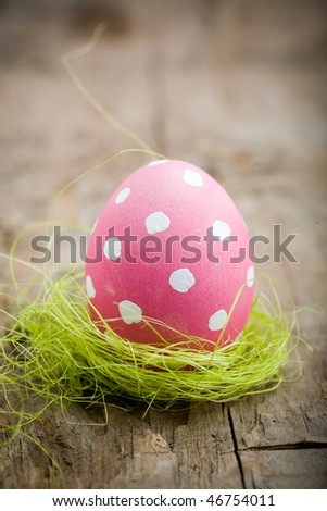 Painted Easter Egg - stock photo