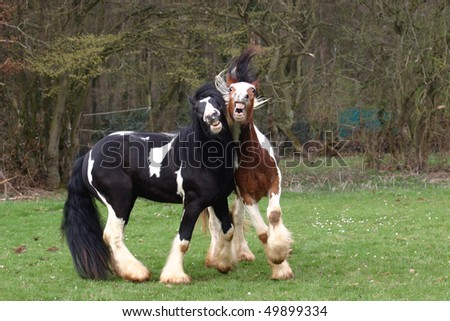 Painted horses - stock photo