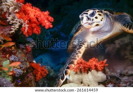 Painted image of a Sea Turtle and Corals.Painted using a computer program - stock photo