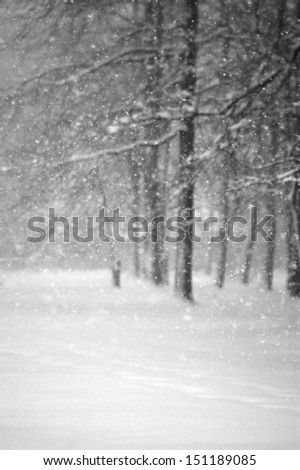 Painted Snow - stock photo