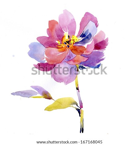 Painted watercolor flower - stock photo