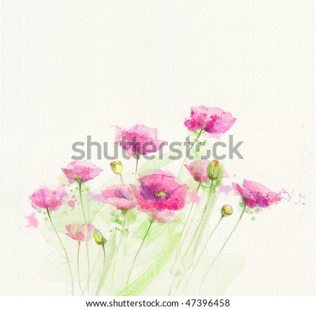 Painted watercolor poppies - stock photo