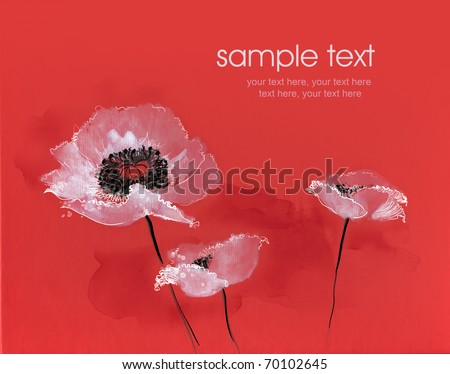 Painted watercolor white poppies on red background - stock photo