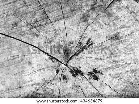 Painted Wood Black and White - stock photo