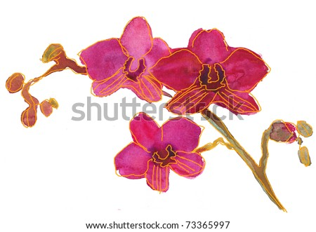 Painting of pink orchid. watercolor - stock photo