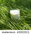 Pair cow milk is useful for your health - stock photo