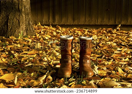 Pair of brown winter boots in autumn park  - stock photo
