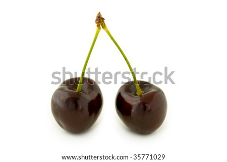 Pair of dark red cherries, with stalks. Isolated on white background, with shadow. - stock photo