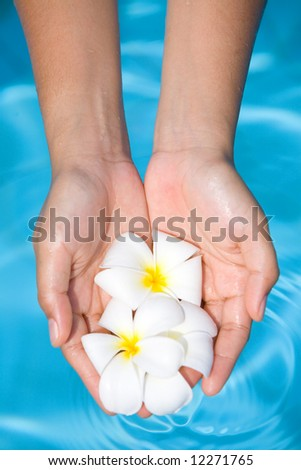 Pair of feminine hands holding fragrant frangipani flowers with clean and clear blue water in background - stock photo