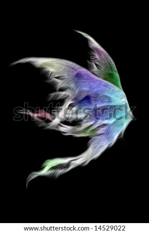 Pair of fluffy fairy wings isolated on black - stock photo