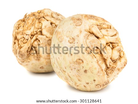 Pair of fresh celery root isolated on white background - stock photo