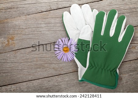 Pair of gloves and flower. On wooden table with copy space - stock photo