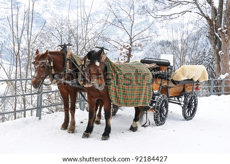Pair of horses. Braunwald, famous Swiss skiing resort - stock photo