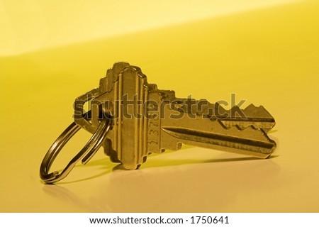 pair of house keys - stock photo