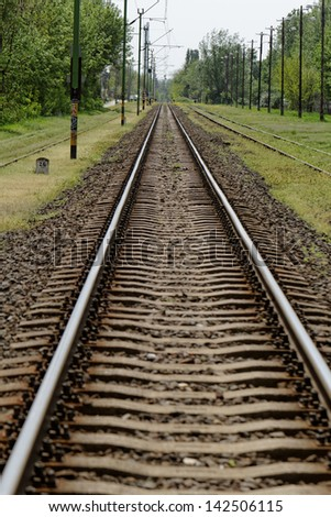 pair of railway track in the green