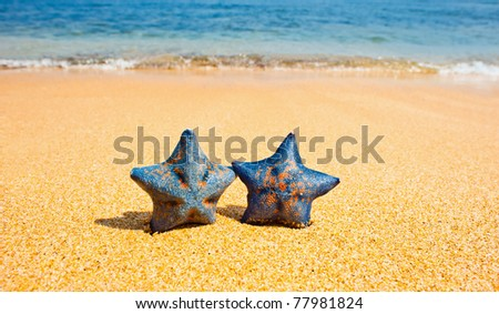 Pair of sea stars at the sand beach against the wave - stock photo