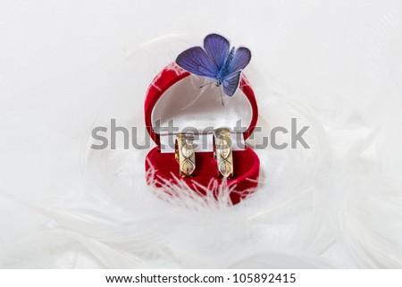 Pair of wedding rings in a gift box on white background
