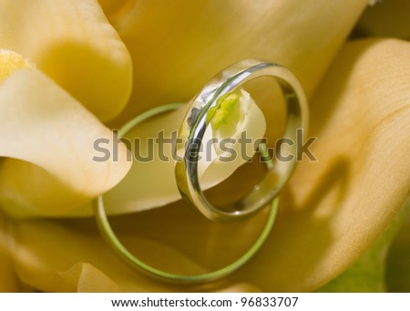 Pair of wedding rings on bouquet flower, macro closeup