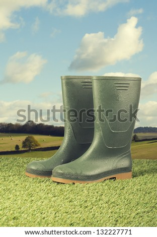 Pair of wellington boots on grass with vintage feel - stock photo