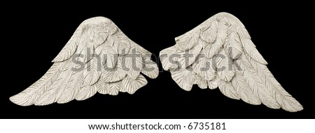 Pair of white wings over black - stock photo