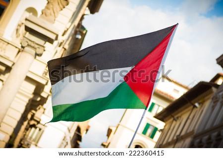 Palestinian flag - stock photo