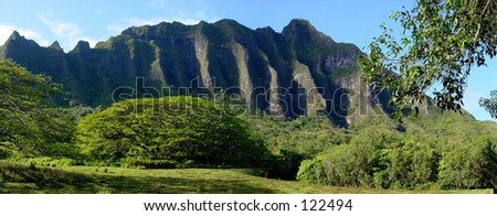 Pali Mountains and rainforest - stock photo