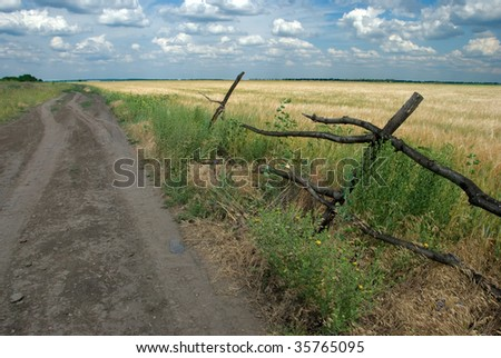 Palisade with a view of wheat field and rural road - stock photo