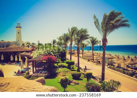 Palm alley on egyptian beach, lighthouse and  view at Red Sea. Egypt. Filtered image:cross processed lomo effect.   - stock photo