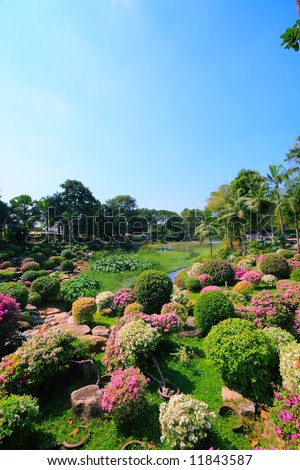 Palm and flower garden, Thailand in sunny summer day - stock photo