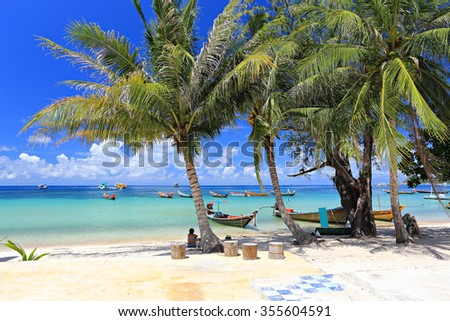 Palm and long tail boats on tropical beach. Koh Tao island, Surat Thani Province, Thailand - stock photo