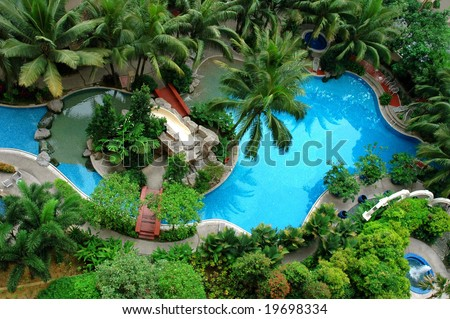 Palm and Swimming pool top view - stock photo