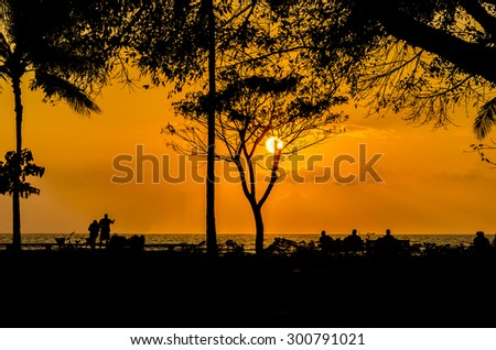 Palm and tropical trees silhouette on sunset tropical beach. - stock photo
