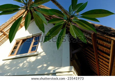 Palm and Villa. (Bali ,Indonesia) - stock photo