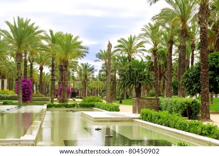Palm Avenue and Fountain - stock photo