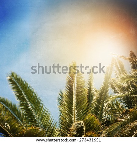 Palm background in vintage style - stock photo
