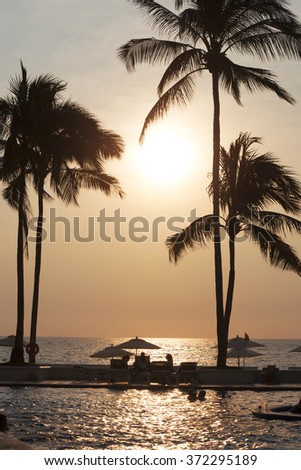 Palm, coconut palm trees by North Pacific Ocean at Puerto Vallarta in Mexico - stock photo