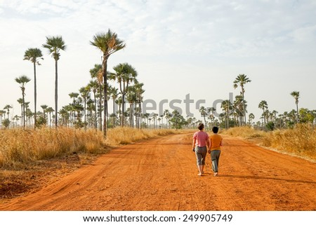 Palm forest on the way from Joal Fadeouth to Samba Dia in Senegal