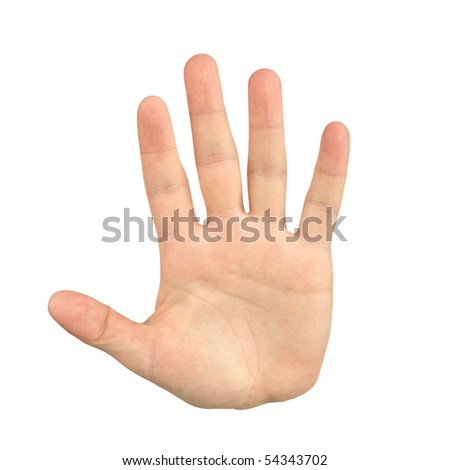 palm hand gesture, isolated on white - stock photo