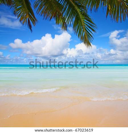 Palm Island Sunshine - stock photo