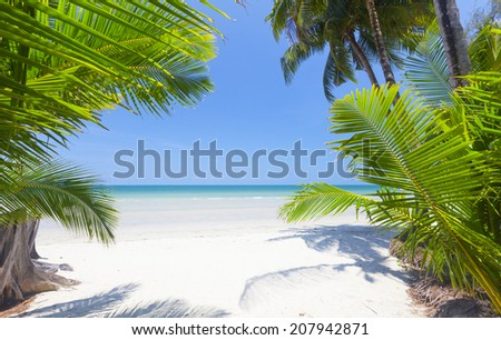 Palm leaf and tropical beach. Koh Chang, Thailand - stock photo