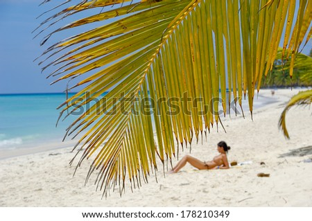 Palm leaf hanging over exotic beach at Saona Island. A woman is sunbathing in the background. - stock photo
