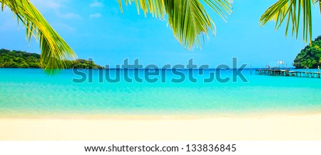 Palm leaves over the beach - stock photo