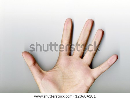 palm of the hand on a white background - stock photo