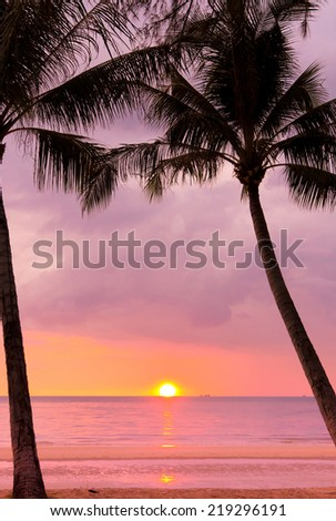 Palm Paradise Fiery Backdrop