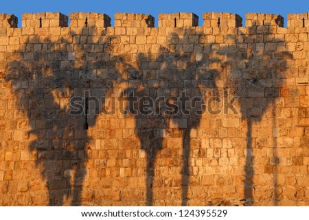 Palm silhouettes on Jerusalem Old City Wall (Israel) - stock photo