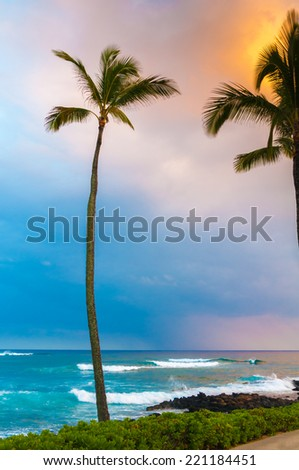 Palm tree during a colorful tropical sunset on the island of Kauai, Hawaii, USA - stock photo