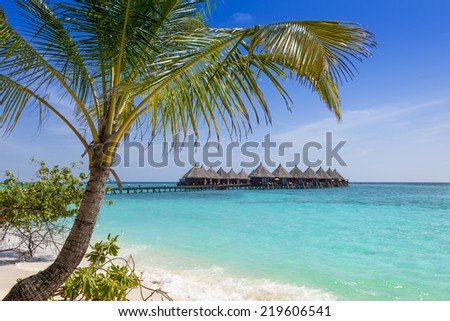 Palm tree framing view on overwater villas and a bridge in tropical blue ocean - stock photo