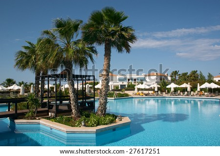 palm tree in swimming pool
