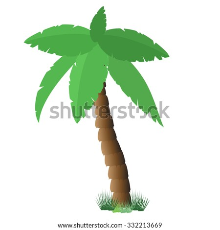 Palm tree isolated on white, coconut tree, palm tree raster, tourism - stock photo