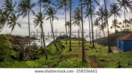 Palm tree landscape of Goa - India - stock photo